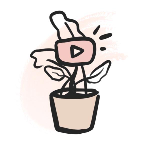 YouTube Reichweite